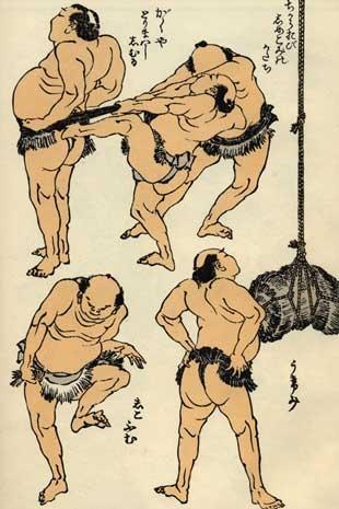 sumo-310x465